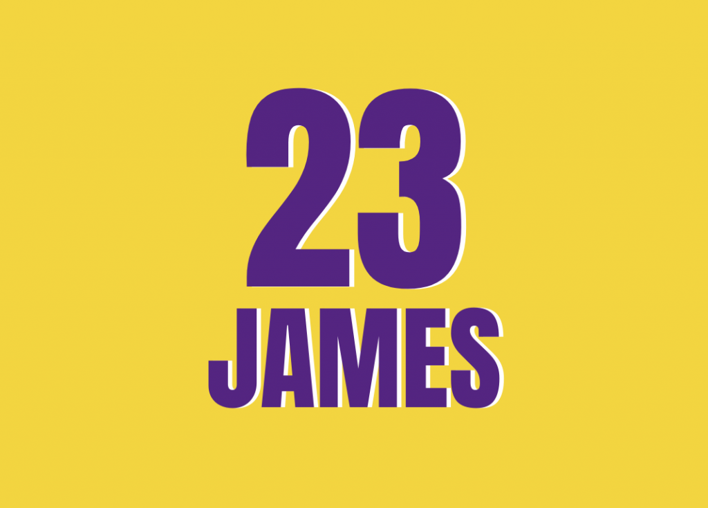 LeBron James - Lakers - Bloc Sports